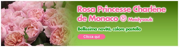 novità princesse charlene de monaco