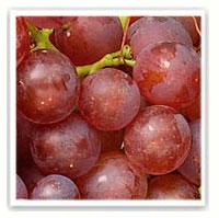 raisin chasselas rosé