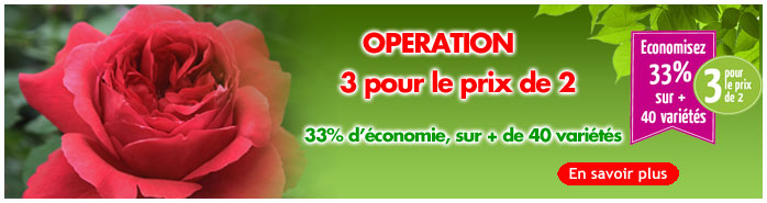 Operation 3 pour 2