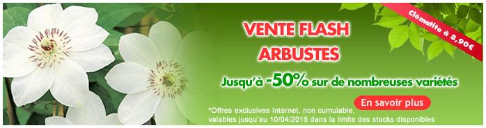 VF arbustes