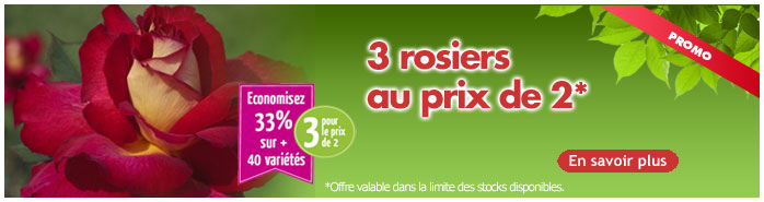 rosiers 3 pour 2