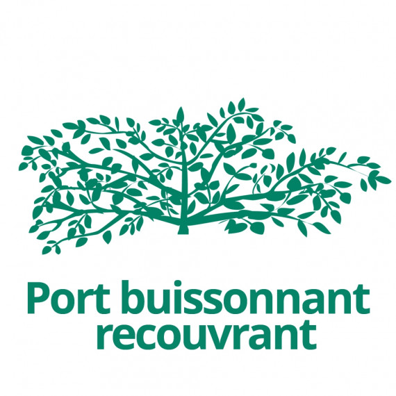Port buissonnant recouvrant