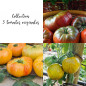 Collection de 3 tomates originales