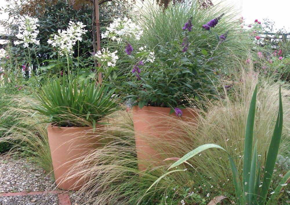 Une Terrasse Comme Au Jardin Avec La Culture En Pots C Est