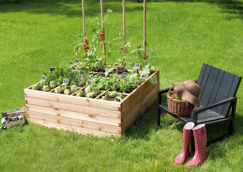 Organiser un potager jardinage potager buttes diversifie - Petit jardin potager facile aulnay sous bois ...