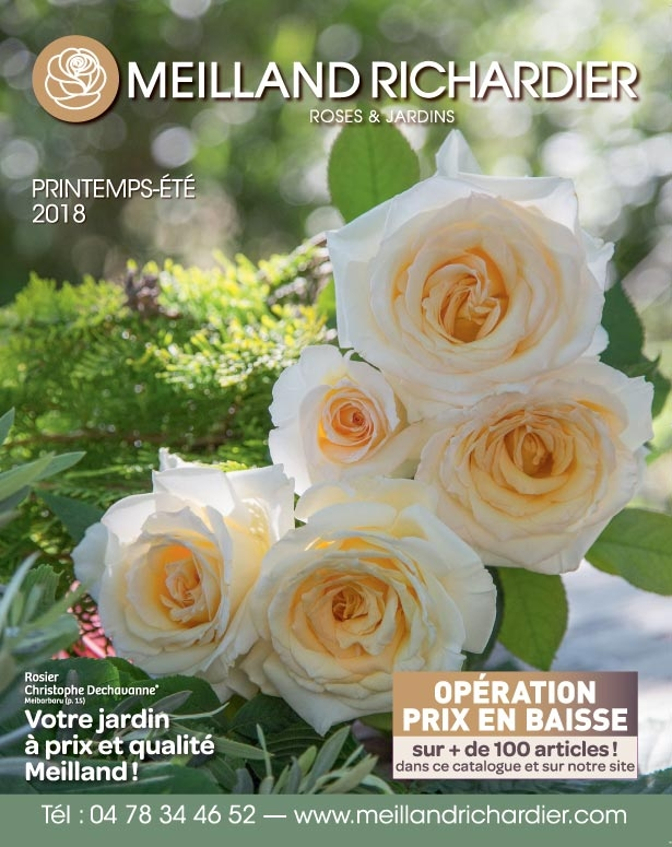 Printemps / Ete 2018 - Catalogue et PDF